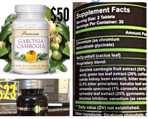 Garcinia Cambogia 1 Ingredient In It Works Fatfighters
